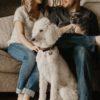 今流行りの「犬コン」とは??犬好きたちが集まるイマドキ婚活!